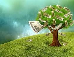 Seed_money